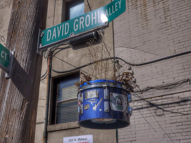 David Grohl Alley