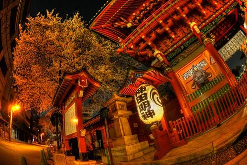 神田明神の夜桜