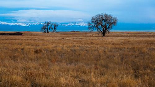 colorado outdoors landscape places rockymountainarsenal denver unitedstates us