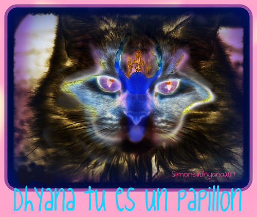 Dhyana you are a butterfly since 8 month now