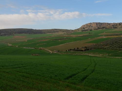 Fuente de Piedra (Spain)