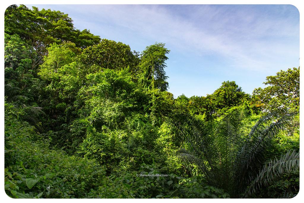 Borneo-20170407-IMG_6857