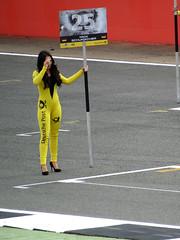 Grid Girl, European Formula 3 - Silverstone 2017