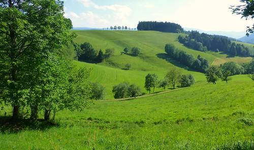 Qu'elle était verte ma vallée!