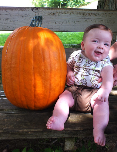 Jack and the pumpkin