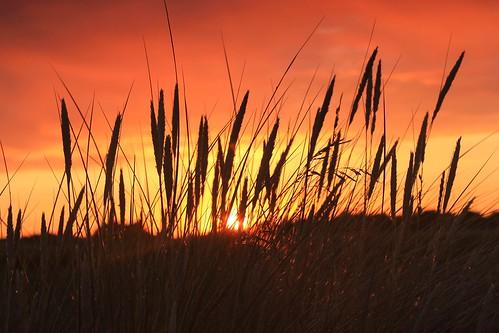 Bury Port Sunset