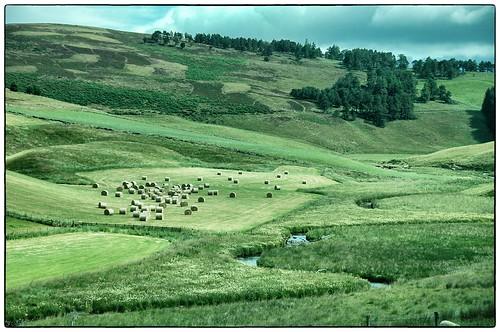 Im Norden Schottlands