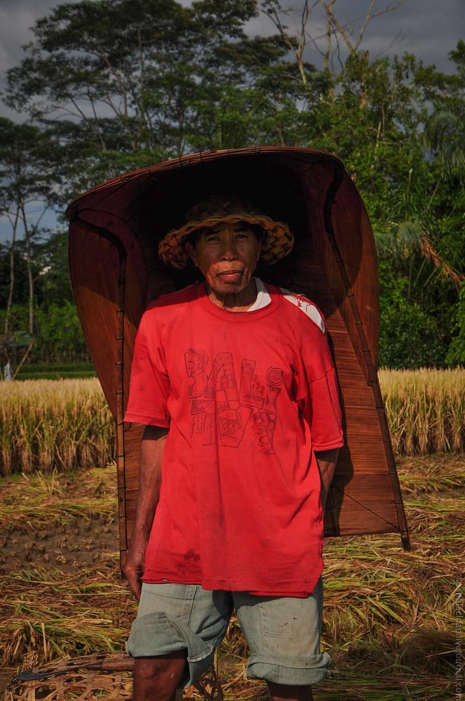 В таких панцирях крестьяне укрываются от изнуряющего солнца, во время работы на полях