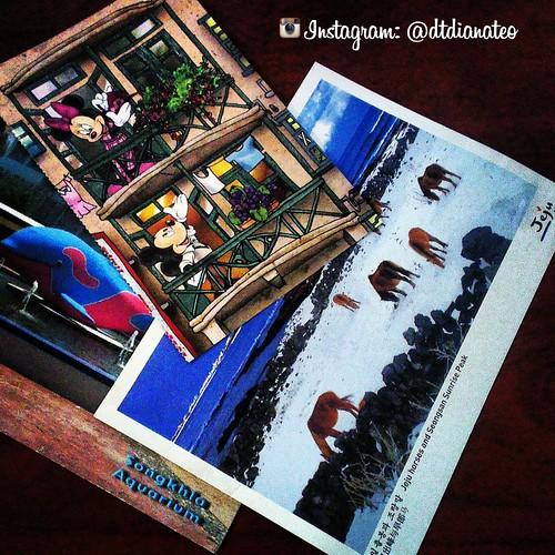 Postcard 26 - HK & Jeju Island