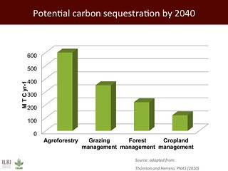 Potential carbon sequestration by 2040