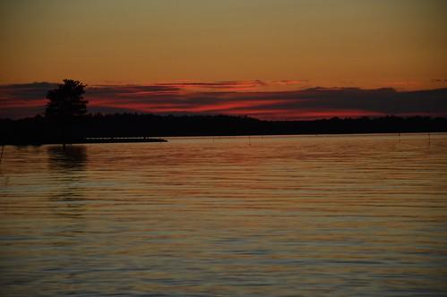 sunset red tree colors landscape sweden