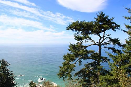 ocean california coast pacific nps deaftalent deafoutsidetalent deafoutdoortalent