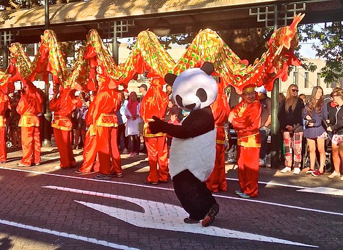A panda celebrates Chinese New Year in the Octagon in Dunedin