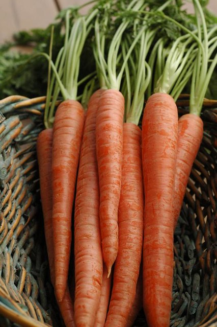 carrots in a basket