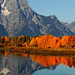 Oxbow Bend by Erazzphoto