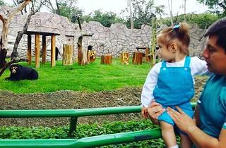#zoo #osodeanteojos #padreehija #Ariana