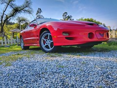 Red trans am #phonephotography #shotbypixel #teampixel #carphotography #cars #musclecar #v8 #corvettewheels #redbeauty #outdoorphotography #insideooutside #jahazielphotography #jemthecrow