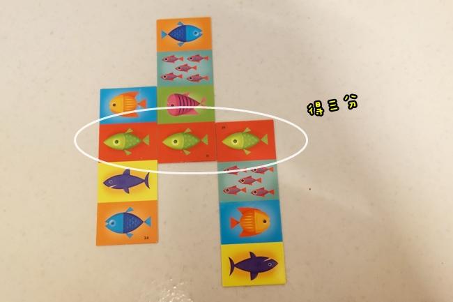 魚魚對對樂 (3).JPG