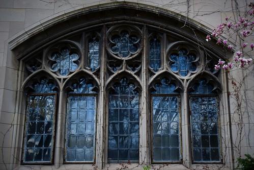 Gothic spring