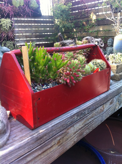 creative potting containers at Potted