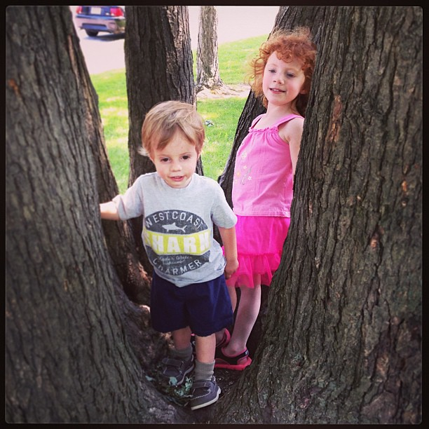 Tree climbing!  #summer #outside #latergram
