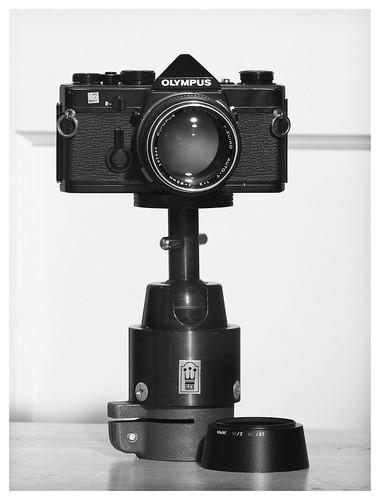 OM-1 & OM Zuiko 85mm f/2