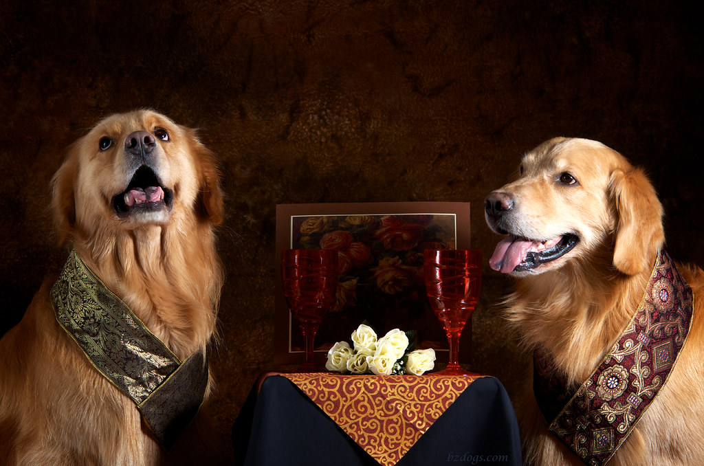 Distinguished Order of Goldens