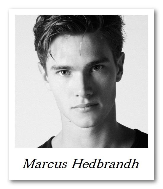 BRAVO_Marcus Hedbrandh