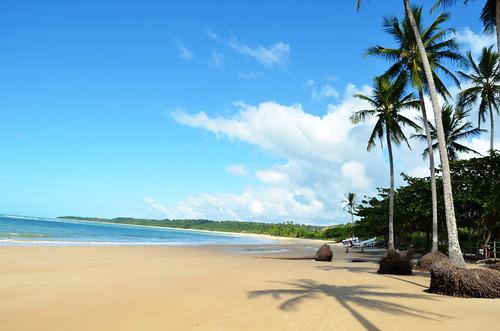 Praia dos Coqueiros - 無料写真検索fotoq