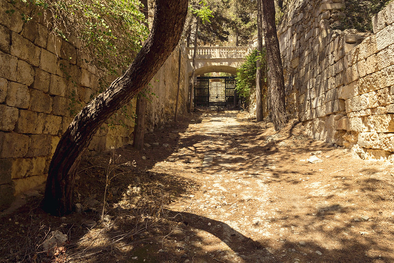 Park lane in Buskett Gardens - Malta