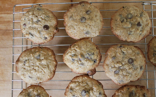 Cherry, chocolate chip, oatmeal cookies