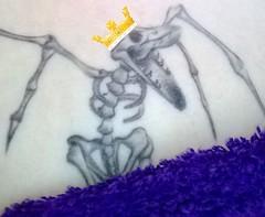 King Bruce