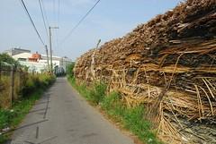 廢印刷電路板堆置在社區。黃煥彰提供