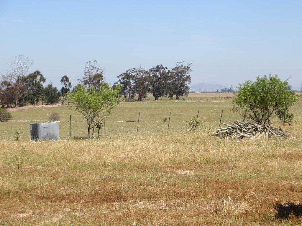 Agf0079 lime fruit irrigation farm farms for sale for Coastal cape farmhouse