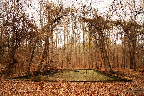 park abandoned amusement indiana roseisland