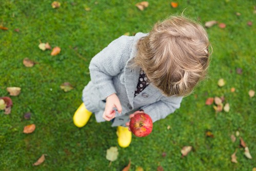 Newton's Cradle (Jessica Collecting Windfall Apples), Kent by flatworldsedge