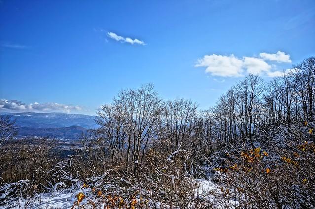 写真_「冬追い1」