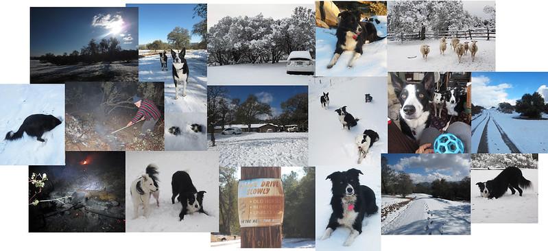 Oakhurst Snow