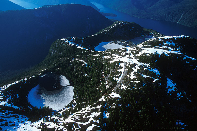 Princess Royal Island, Great Bear Rainforest, Central Coast of British Columbia, Canada