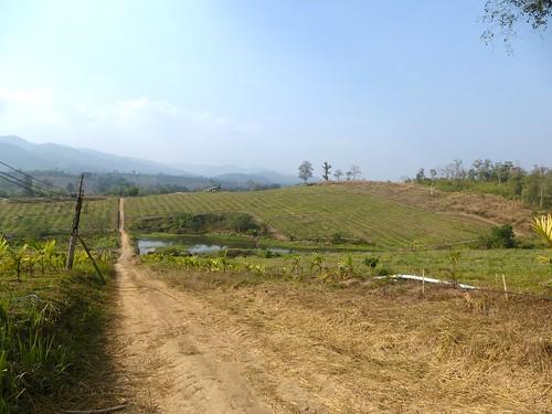 Th-Um Phang -Mototaxi (67)