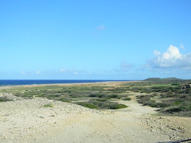 Aruba-Arashi Beach 1