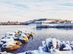Sunny winter seascape