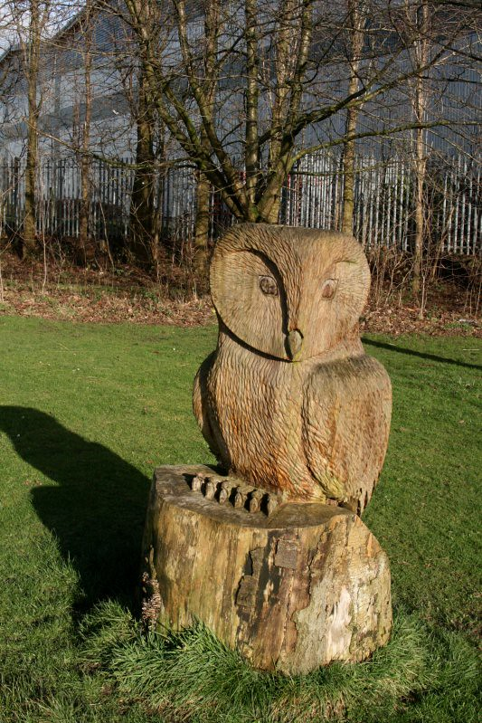 Eds Owl