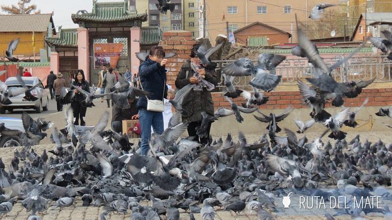 Ulan Bator Mongolia (3)