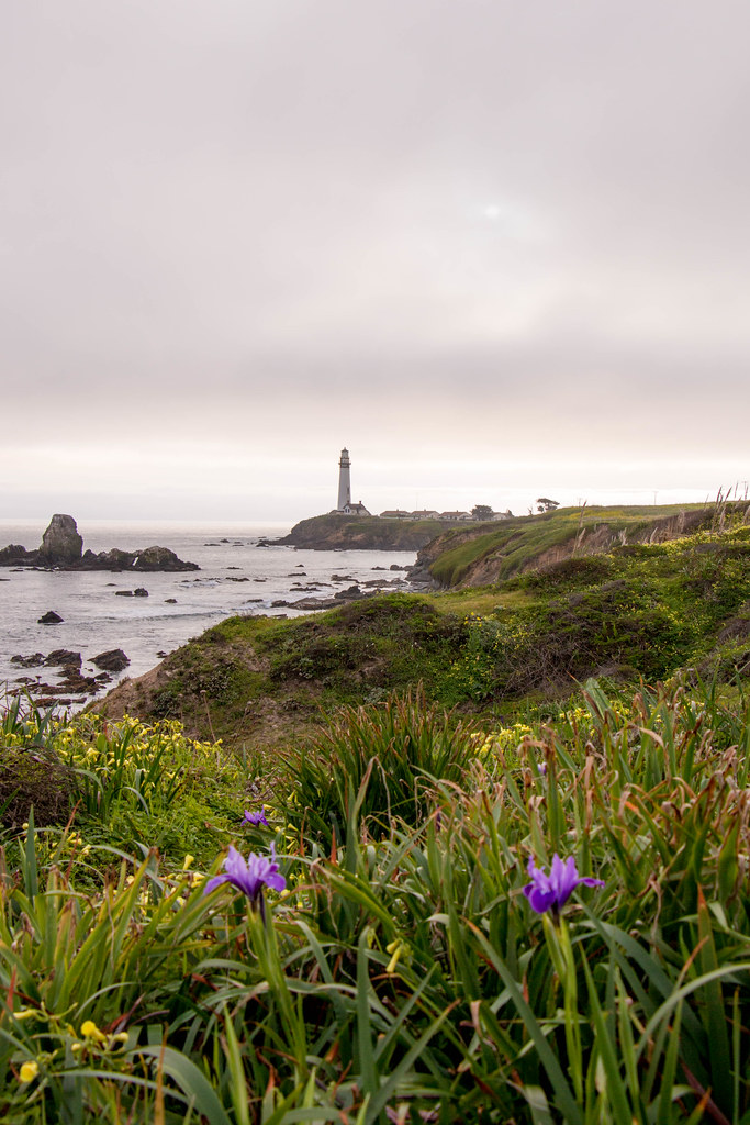 03.18. Pigeon Point Bluffs