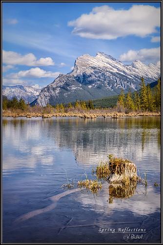 vermillion lake banff national park alberta canada canadian rockies reflection spring