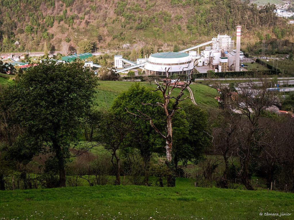 07.- Camino del Salvador-8ª etapa (56)