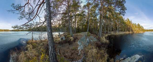 The Early Spring Thaw [National Park of Tyresta]