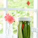 Quick Pickles by Pamela Greer