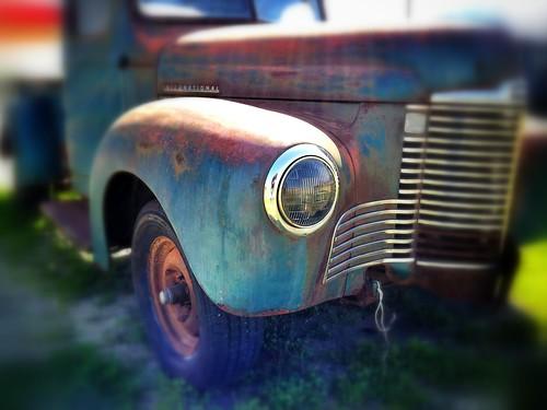 flickrandroidapp:filter=none vigilantphotographersunite